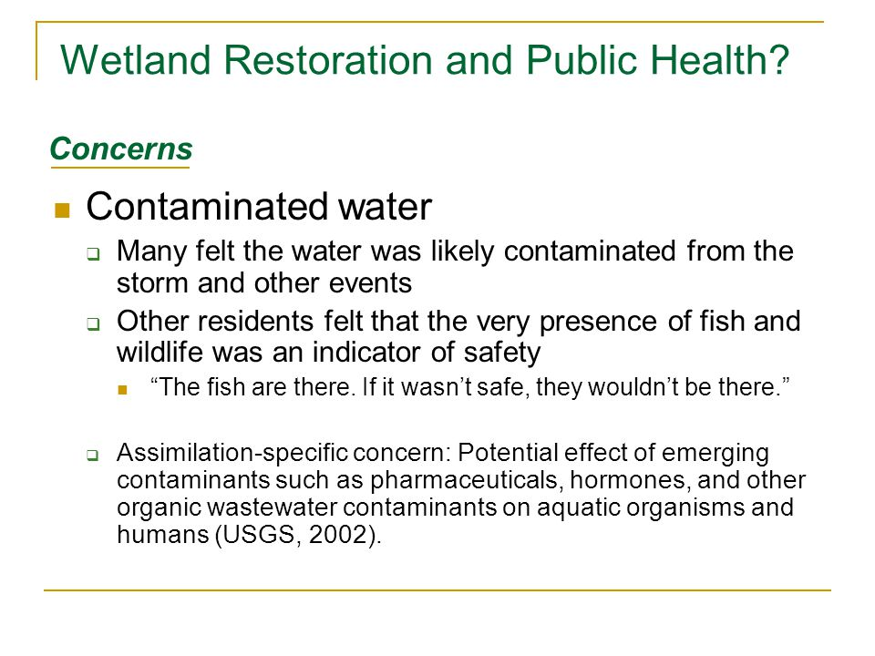 Wetland Restoration and Public Health? Contaminated water  Many felt the water was likely contaminated from the storm and other events  Other reside