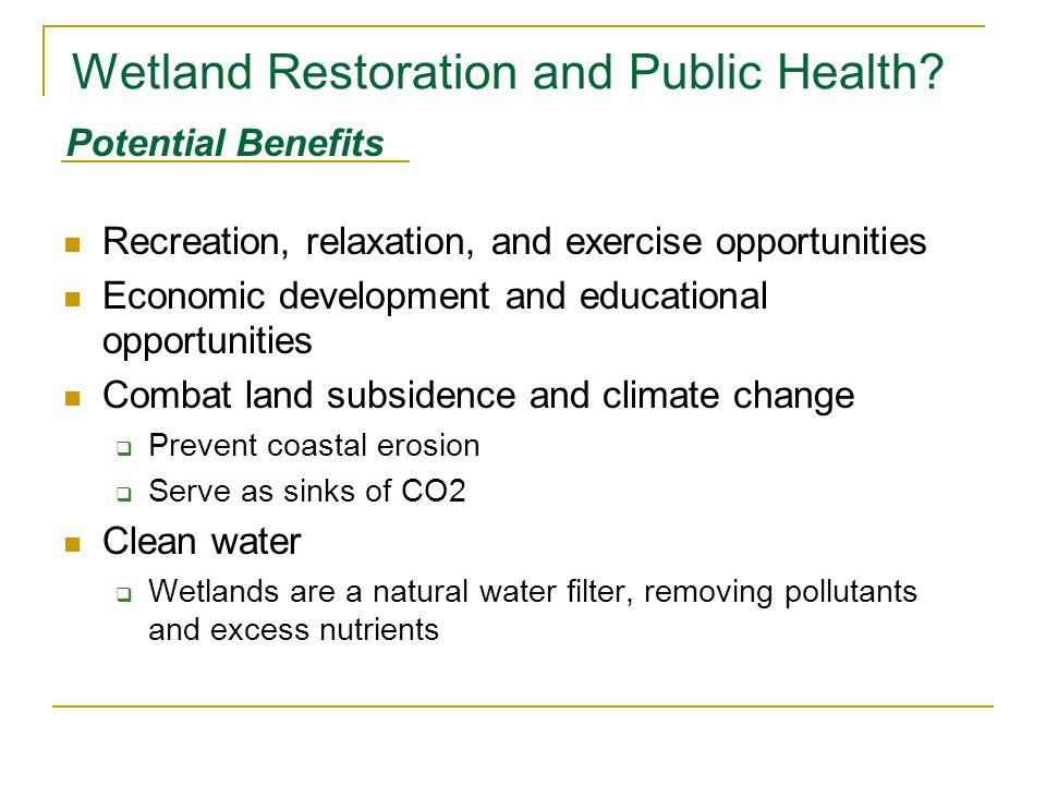 Wetland Restoration and Public Health.