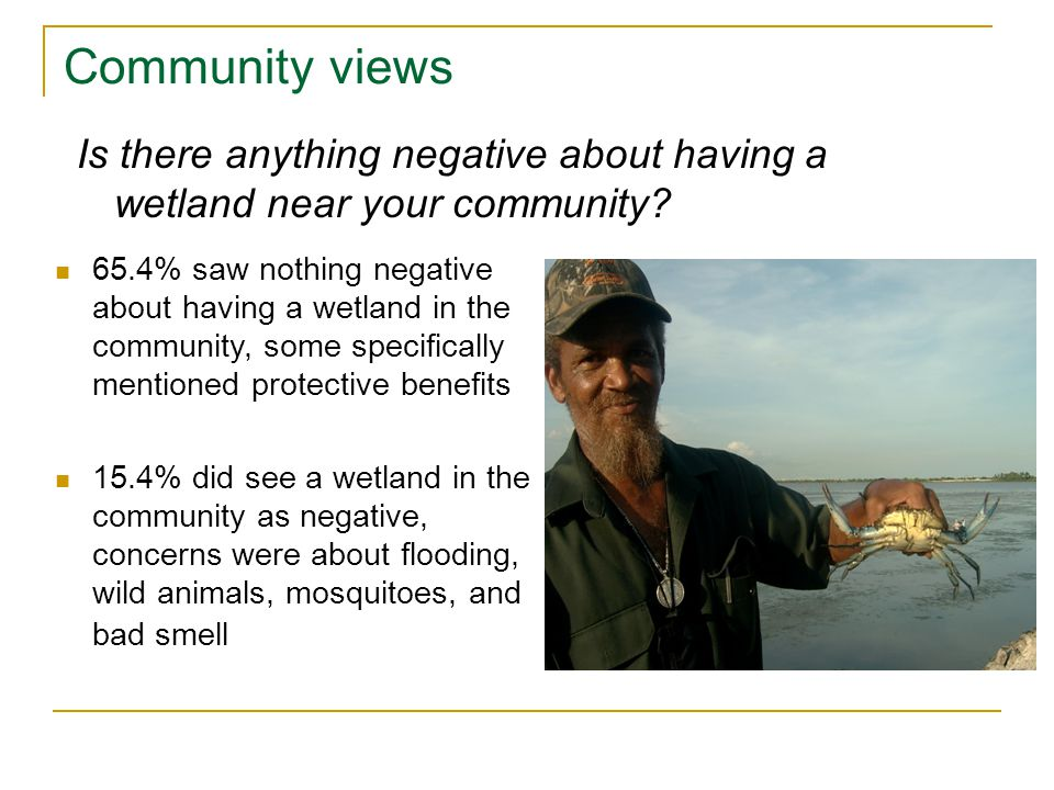 65.4% saw nothing negative about having a wetland in the community, some specifically mentioned protective benefits 15.4% did see a wetland in the community as negative, concerns were about flooding, wild animals, mosquitoes, and bad smell Is there anything negative about having a wetland near your community.