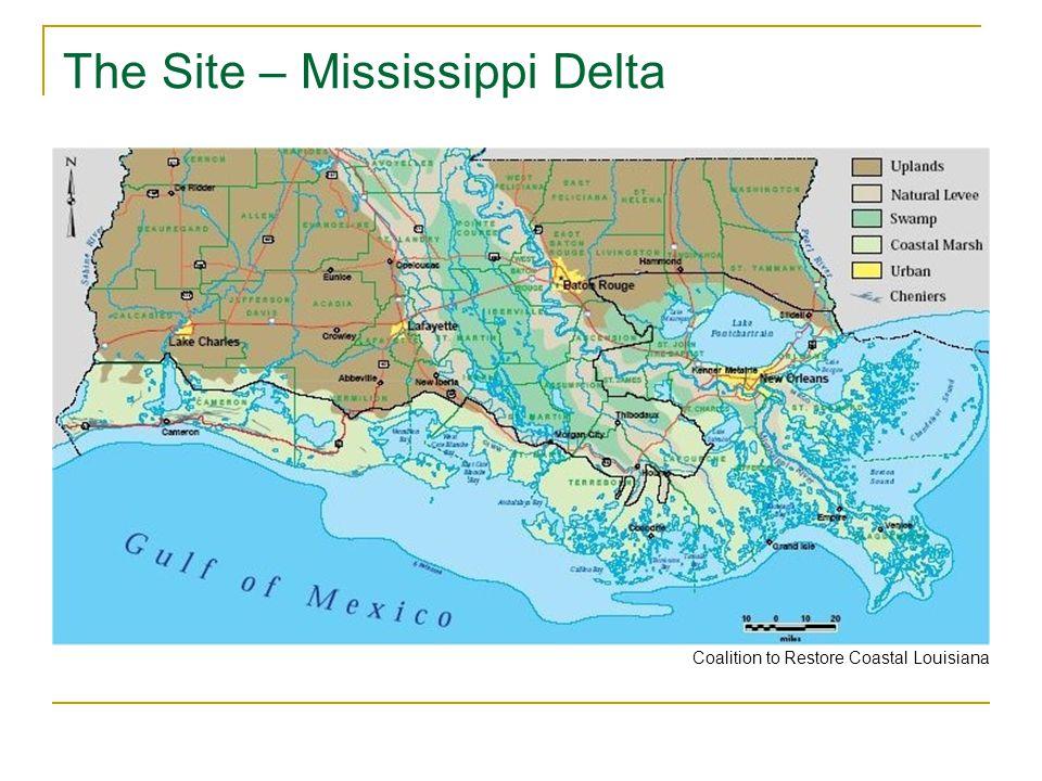 The Site – Mississippi Delta Coalition to Restore Coastal Louisiana