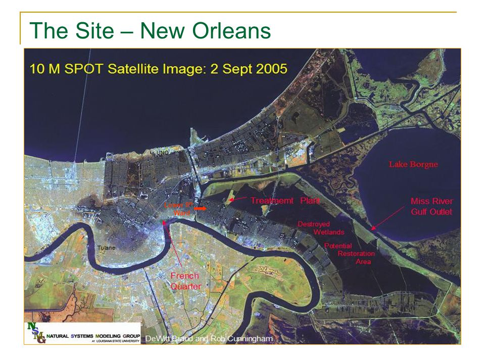 Lower 9 th Ward The Site – New Orleans