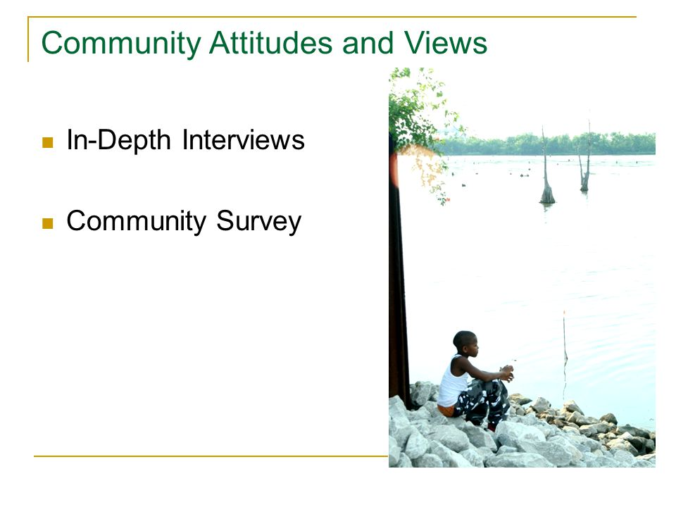 In-Depth Interviews Community Survey Community Attitudes and Views