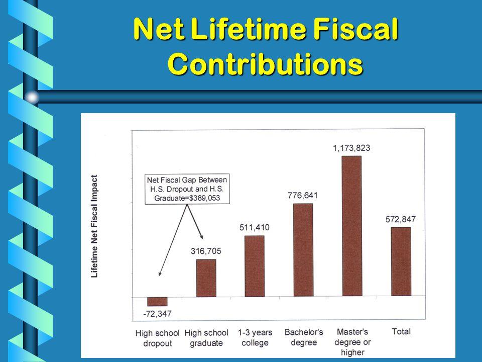 Net Lifetime Fiscal Contributions
