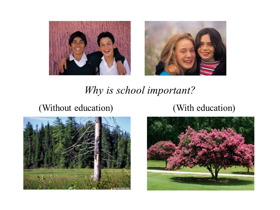 (Without education)(With education) Why is school important?