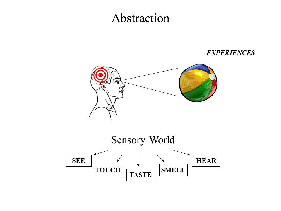 Abstraction Sensory World SEE TOUCH TASTE SMELL HEAR EXPERIENCES