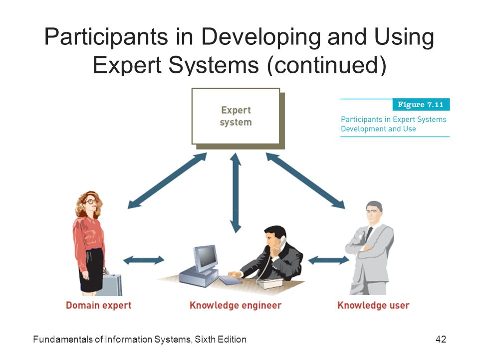 Participants in Developing and Using Expert Systems (continued) Fundamentals of Information Systems, Sixth Edition42