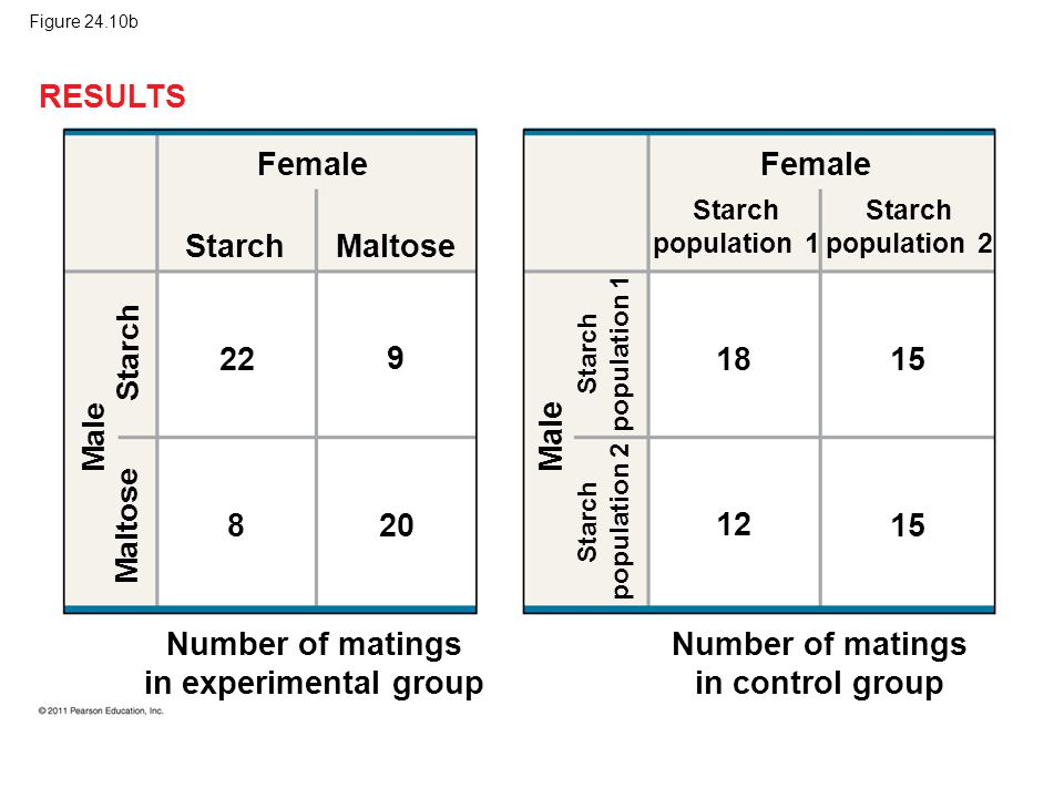 Figure 24.10b RESULTS Female Starch Maltose Male Maltose Starch Number of matings in experimental group 22 9 8 20 Female Starch population 1 Male Star