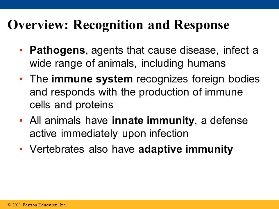 Overview: Recognition and Response Pathogens, agents that cause disease, infect a wide range of animals, including humans The immune system recognizes