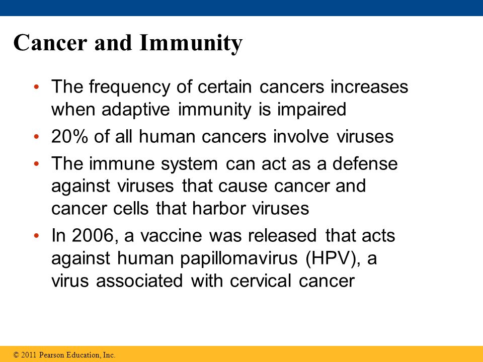 Cancer and Immunity The frequency of certain cancers increases when adaptive immunity is impaired 20% of all human cancers involve viruses The immune