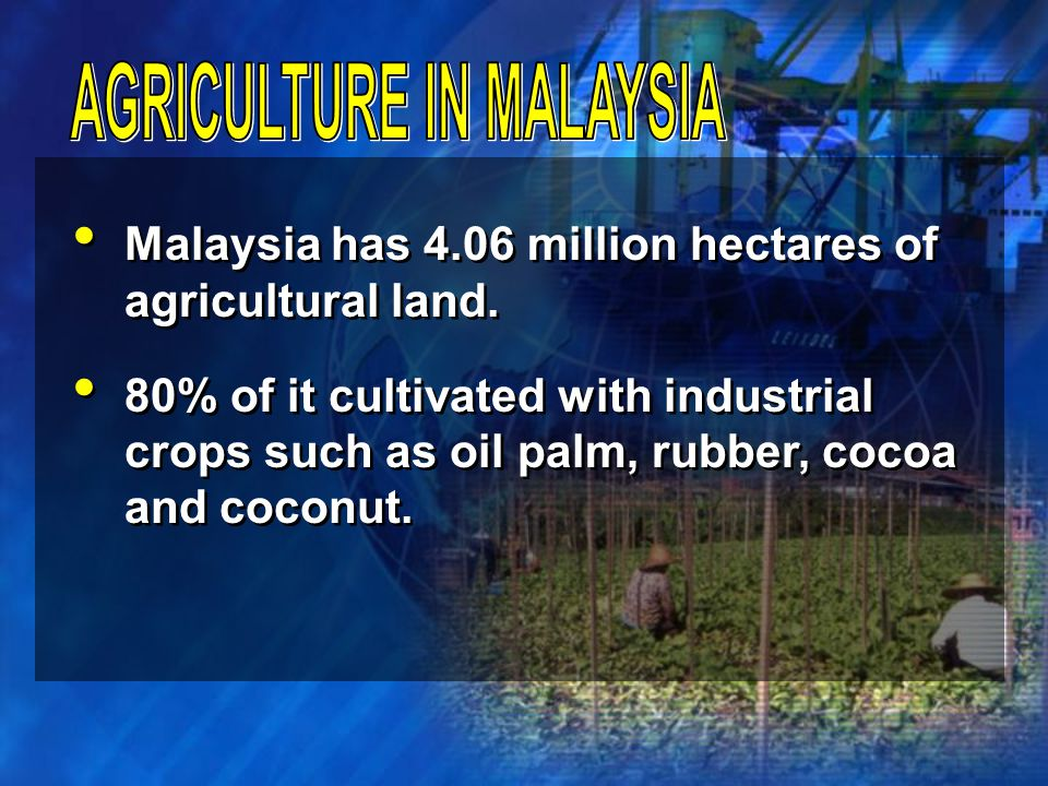 Agriculture contributes 8.5% to Gross Domestic Products (GDP) of Malaysia worth USD 5.6 billions in 2004.
