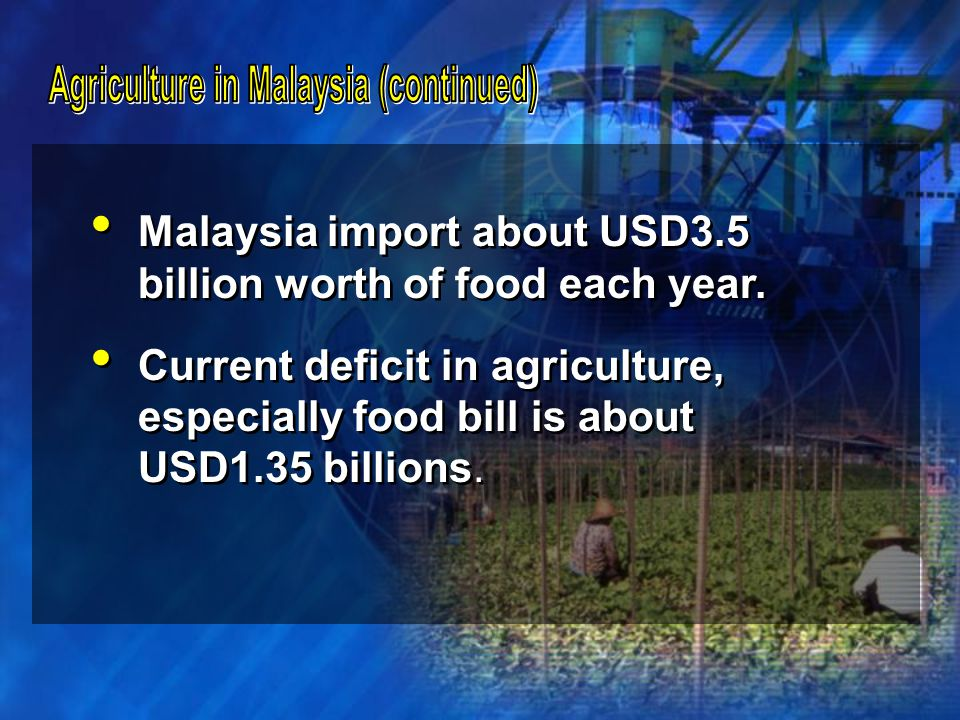 Transforming traditional farming into modern commercial farming, Land consolidation and rehabilitation of idle lands, Improved infrastructures with good drainage & irrigation facilities, Application of latest technologies and knowledge-based production system, Transforming traditional farming into modern commercial farming, Land consolidation and rehabilitation of idle lands, Improved infrastructures with good drainage & irrigation facilities, Application of latest technologies and knowledge-based production system,