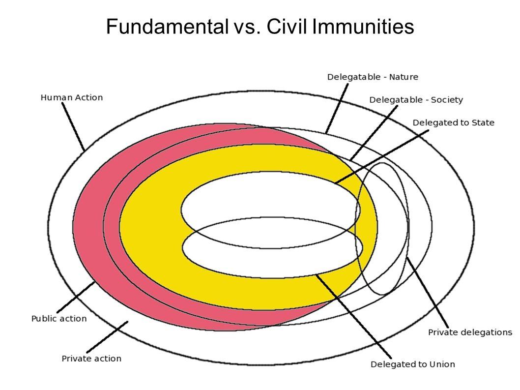 Fundamental vs. Civil Immunities