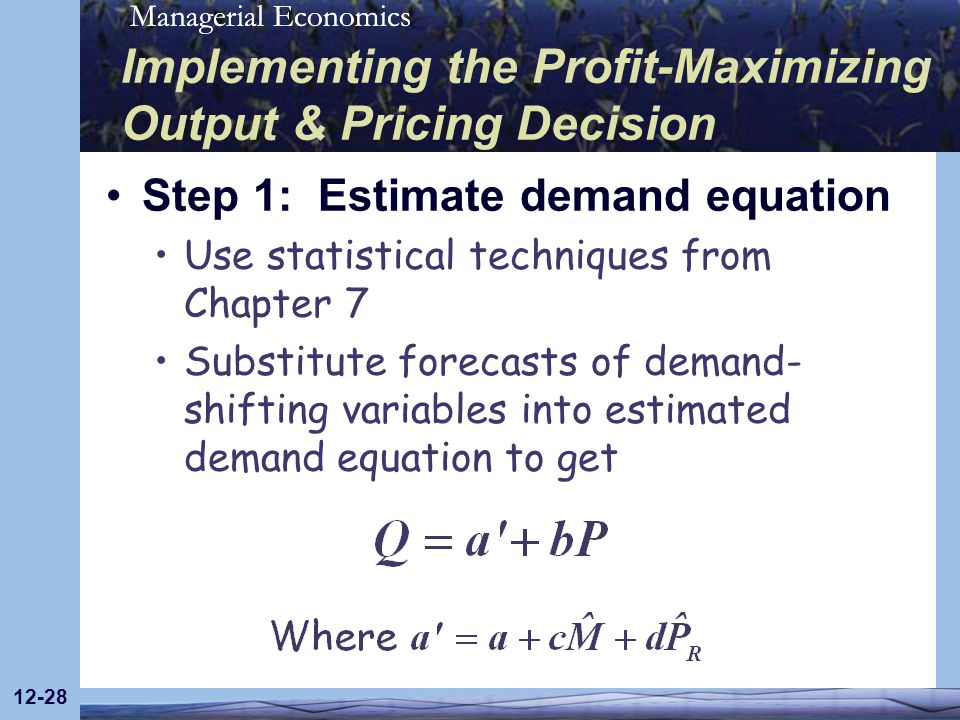 Managerial Economics 12-28 Implementing the Profit-Maximizing Output & Pricing Decision Step 1: Estimate demand equation Use statistical techniques fr