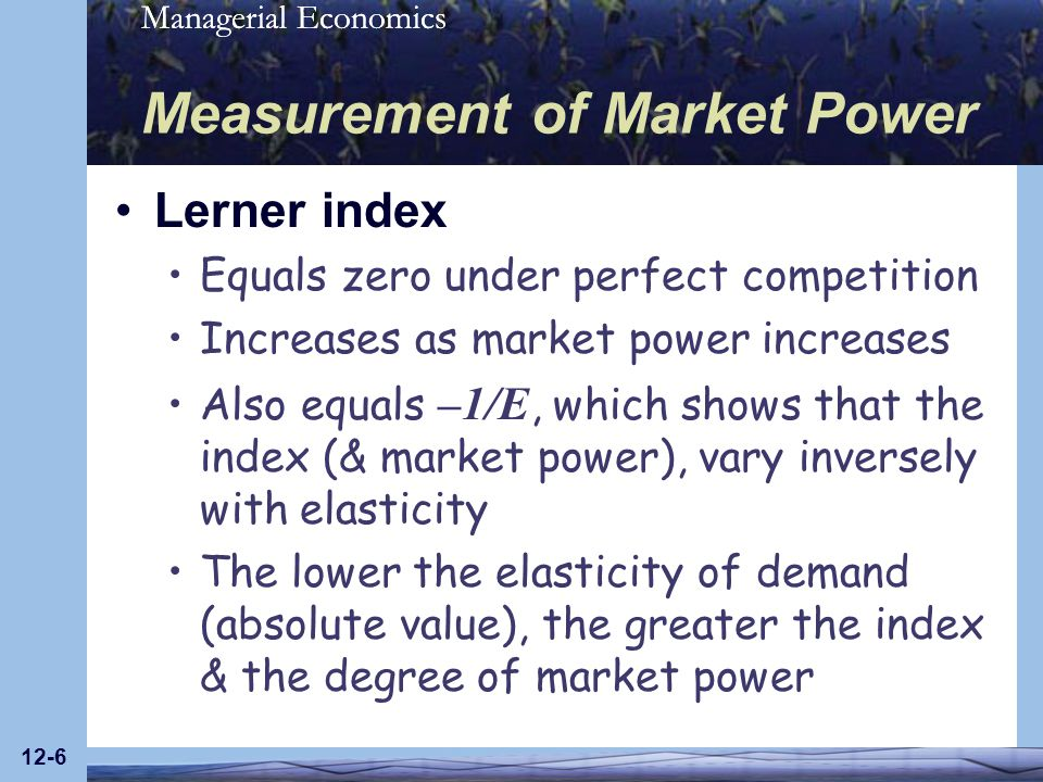 Managerial Economics 12-7 Measurement of Market Power If consumers view two goods as substitutes, cross-price elasticity of demand (E XY ) is positive The higher the positive cross-price elasticity, the greater the substitutability between two goods, & the smaller the degree of market power for the two firms