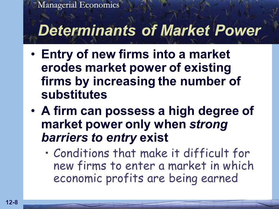 Managerial Economics 12-19 Long-Run Profit Maximization for Monopoly (Figure 12.5)