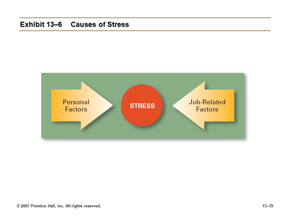 © 2007 Prentice Hall, Inc. All rights reserved.13–19 Exhibit 13–6Causes of Stress