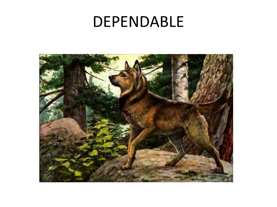 DEPENDABLE
