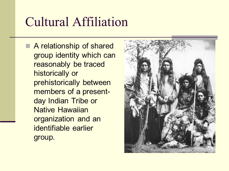 Cultural Affiliation A relationship of shared group identity which can reasonably be traced historically or prehistorically between members of a prese