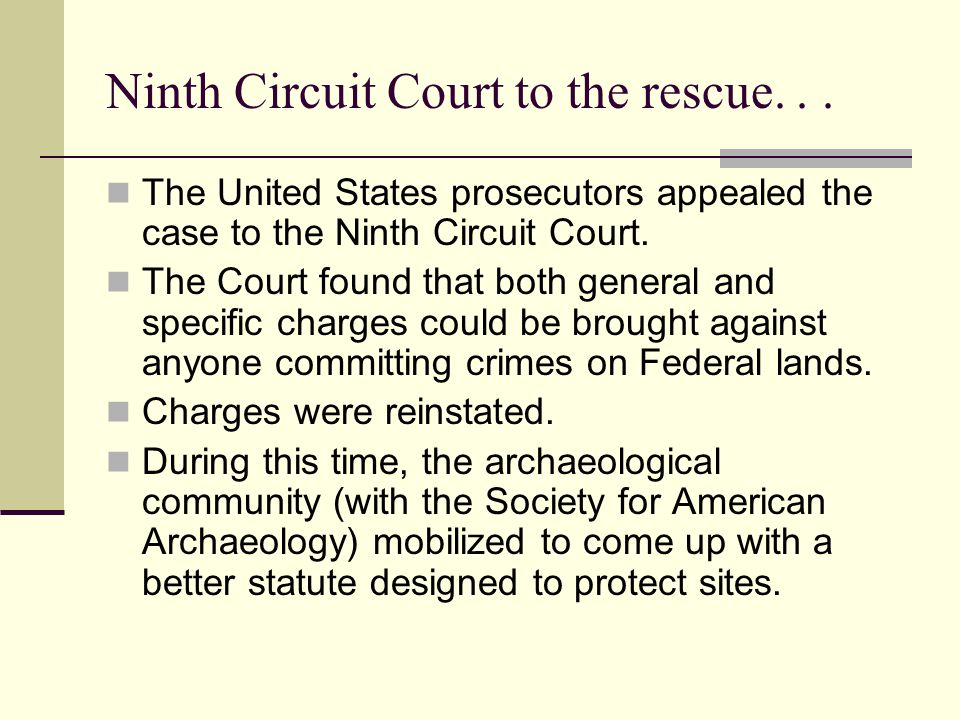 Ninth Circuit Court to the rescue... The United States prosecutors appealed the case to the Ninth Circuit Court. The Court found that both general and