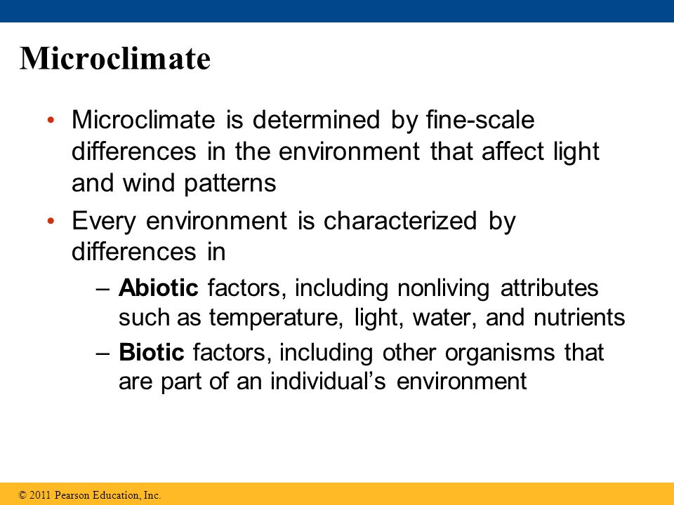 Microclimate Microclimate is determined by fine-scale differences in the environment that affect light and wind patterns Every environment is characte