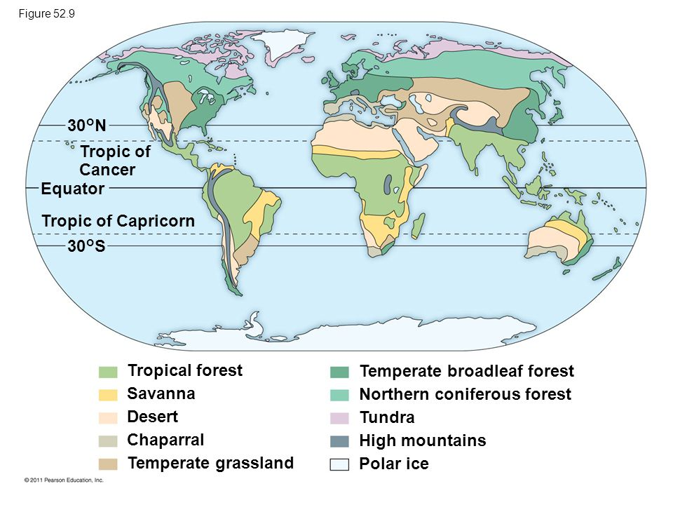 Tropic of Cancer 30°N 30°S Tropic of Capricorn Equator Tropical forest Savanna Desert Chaparral Temperate grassland Temperate broadleaf forest Norther