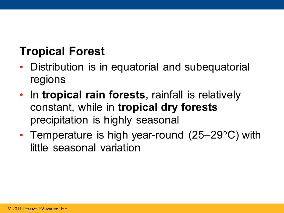 Tropical Forest Distribution is in equatorial and subequatorial regions In tropical rain forests, rainfall is relatively constant, while in tropical d