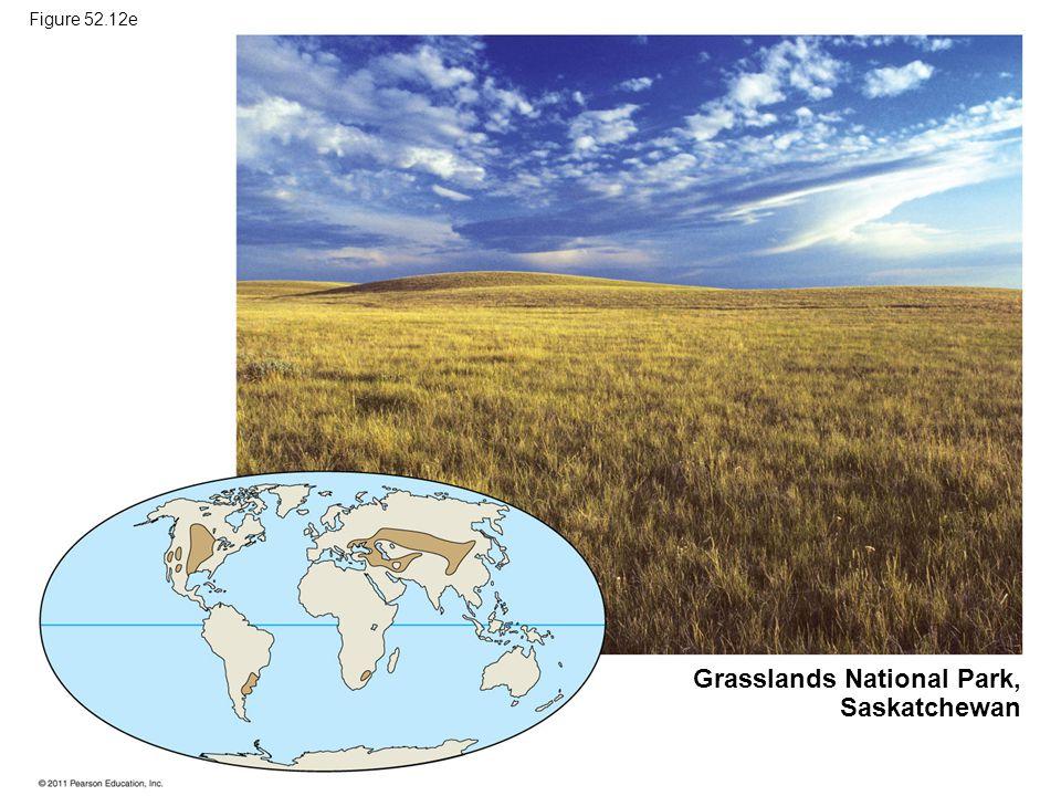 Figure 52.12e Grasslands National Park, Saskatchewan