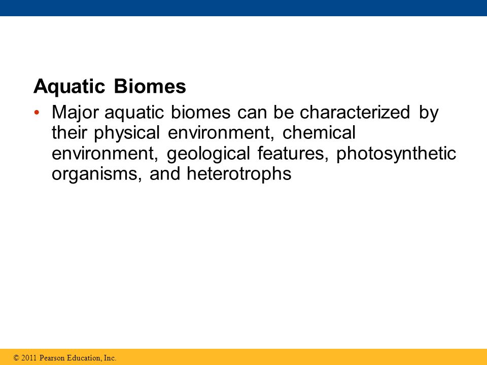 Aquatic Biomes Major aquatic biomes can be characterized by their physical environment, chemical environment, geological features, photosynthetic orga