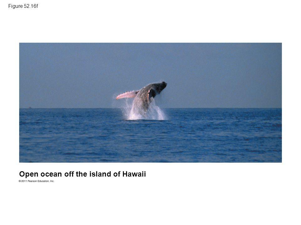 Figure 52.16f Open ocean off the island of Hawaii
