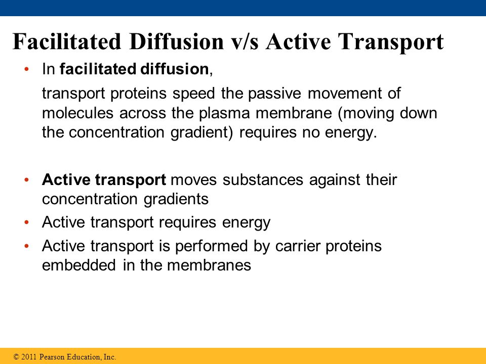 Facilitated Diffusion v/s Active Transport In facilitated diffusion, transport proteins speed the passive movement of molecules across the plasma membrane (moving down the concentration gradient) requires no energy.
