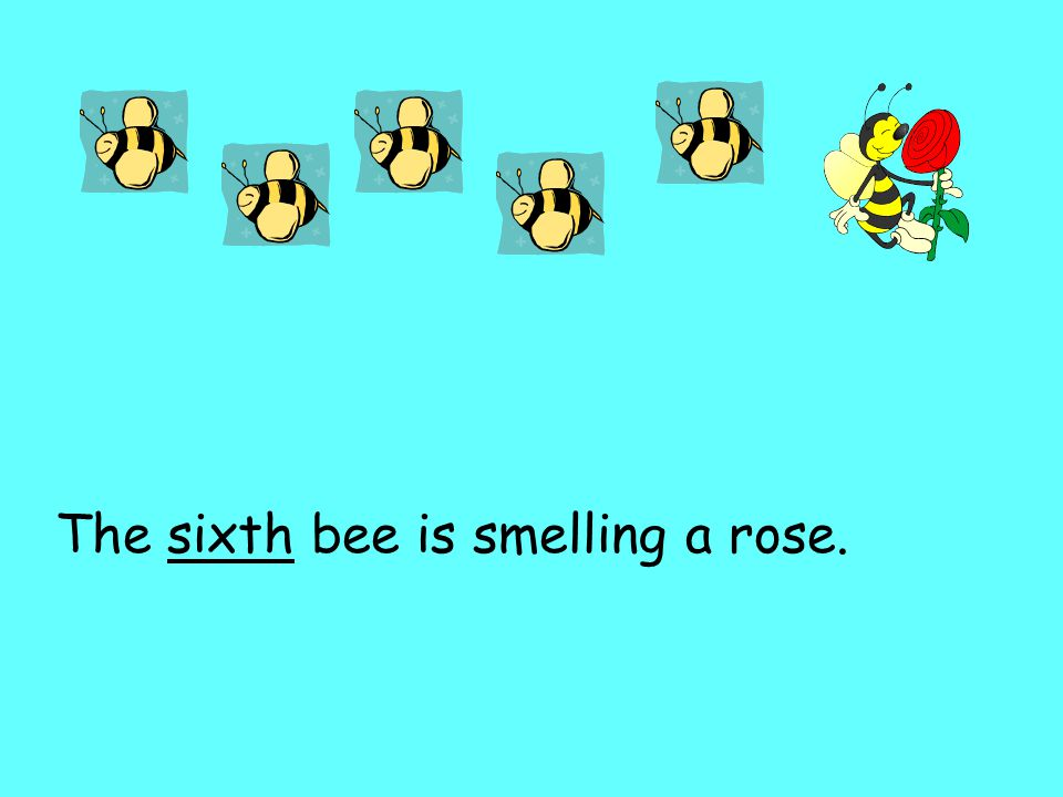 The sixth bee is smelling a rose.