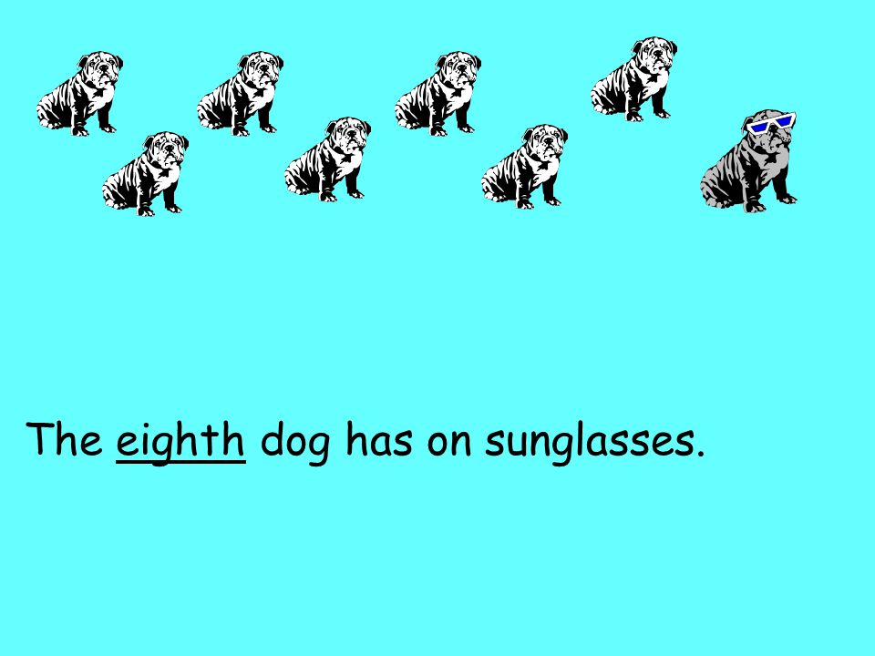The eighth dog has on sunglasses.