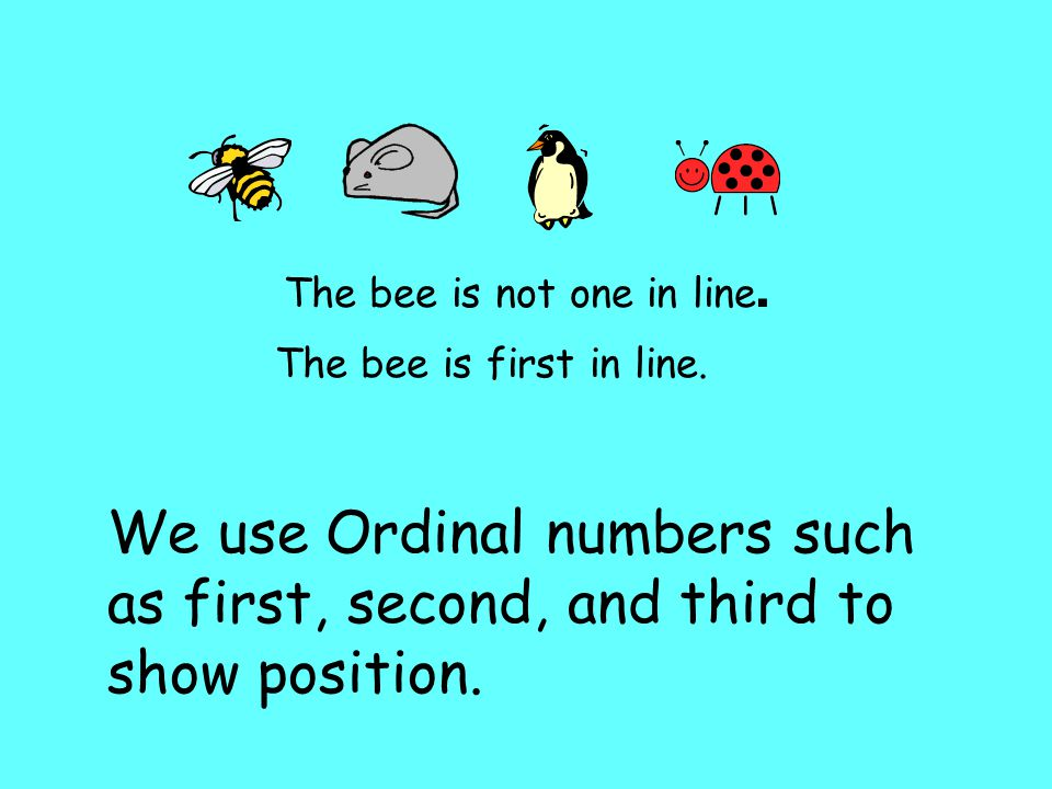 The bee is not one in line. The bee is first in line.