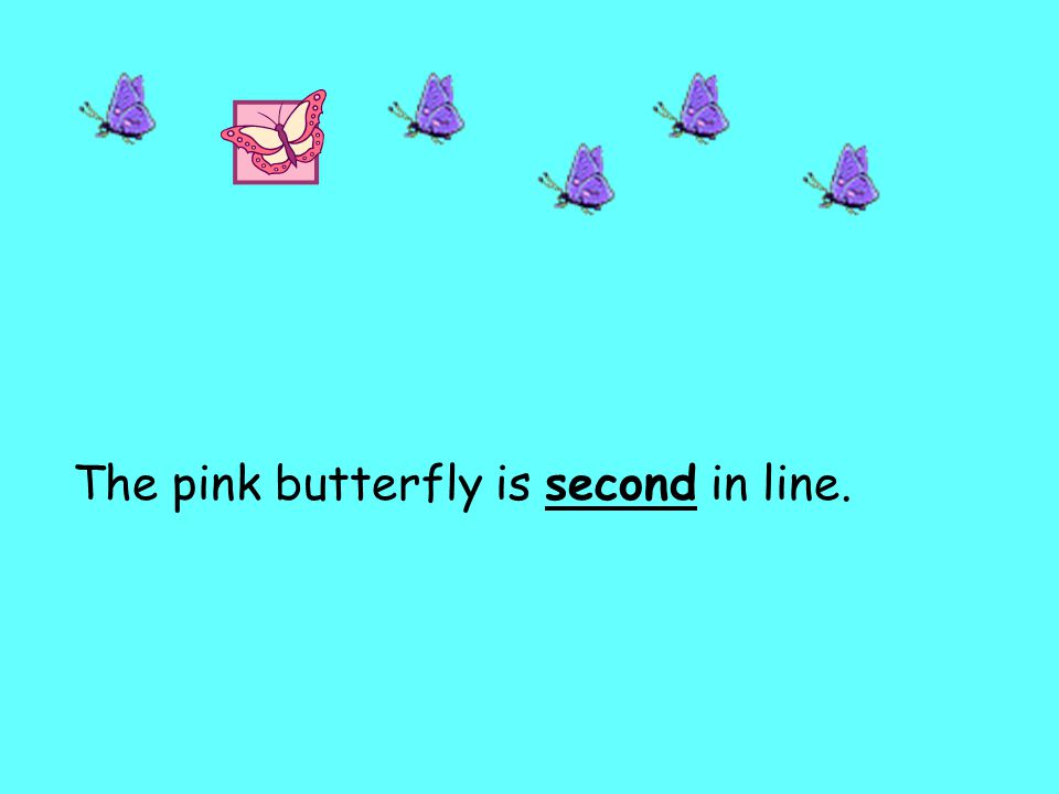 The pink butterfly is second in line.