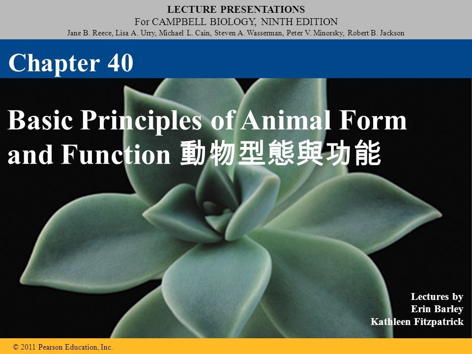 LECTURE PRESENTATIONS For CAMPBELL BIOLOGY, NINTH EDITION Jane B. Reece, Lisa A. Urry, Michael L. Cain, Steven A. Wasserman, Peter V. Minorsky, Robert