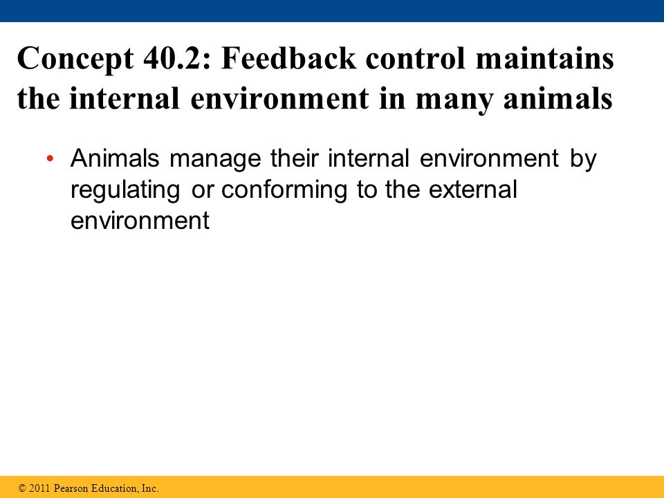 Concept 40.2: Feedback control maintains the internal environment in many animals Animals manage their internal environment by regulating or conformin
