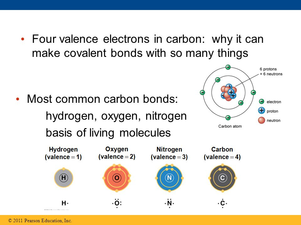 Four valence electrons in carbon: why it can make covalent bonds with so many things © 2011 Pearson Education, Inc.