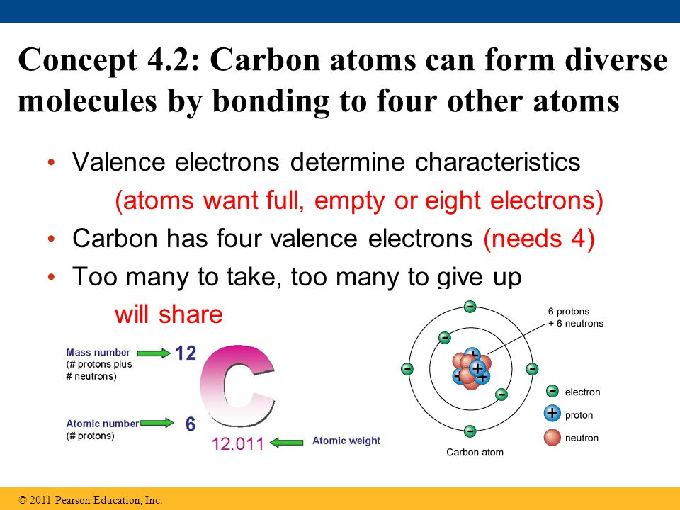 Concept 4.2: Carbon atoms can form diverse molecules by bonding to four other atoms Valence electrons determine characteristics (atoms want full, empty or eight electrons) Carbon has four valence electrons (needs 4) Too many to take, too many to give up will share © 2011 Pearson Education, Inc.