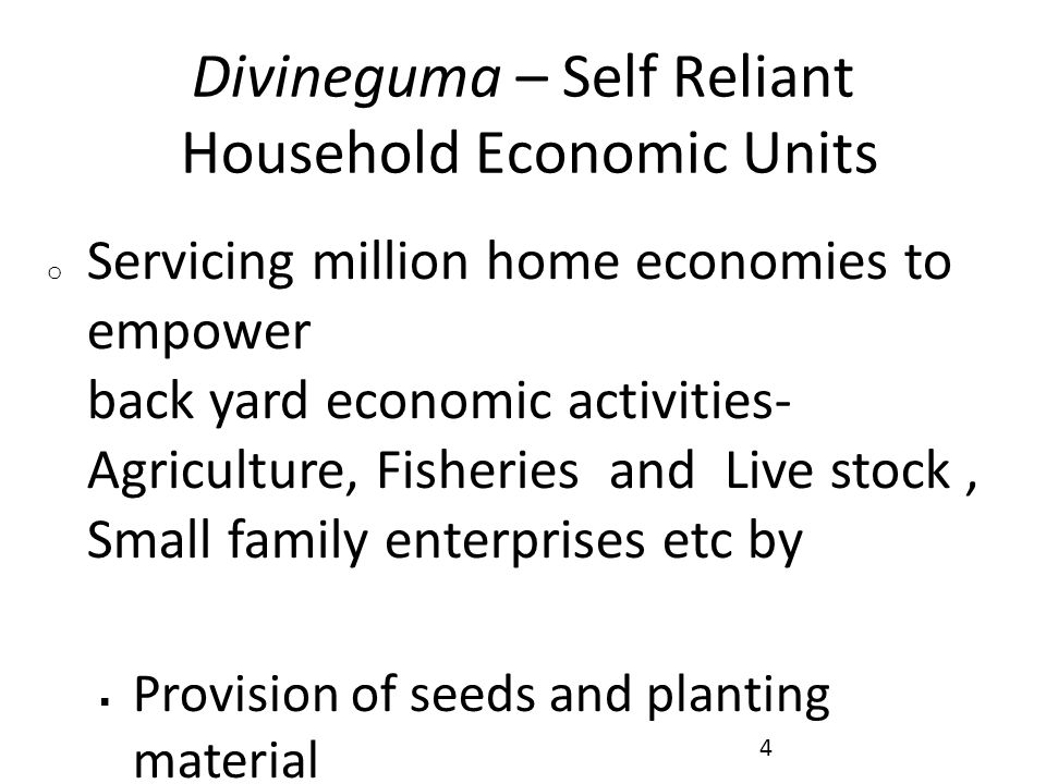 Divineguma – Self Reliant Household Economic Units o Servicing million home economies to empower back yard economic activities- Agriculture, Fisheries and Live stock, Small family enterprises etc by  Provision of seeds and planting material  Development of green houses, seed farms, poly tunnels, promotional nurseries, agro wells, organic fertilizer etc.