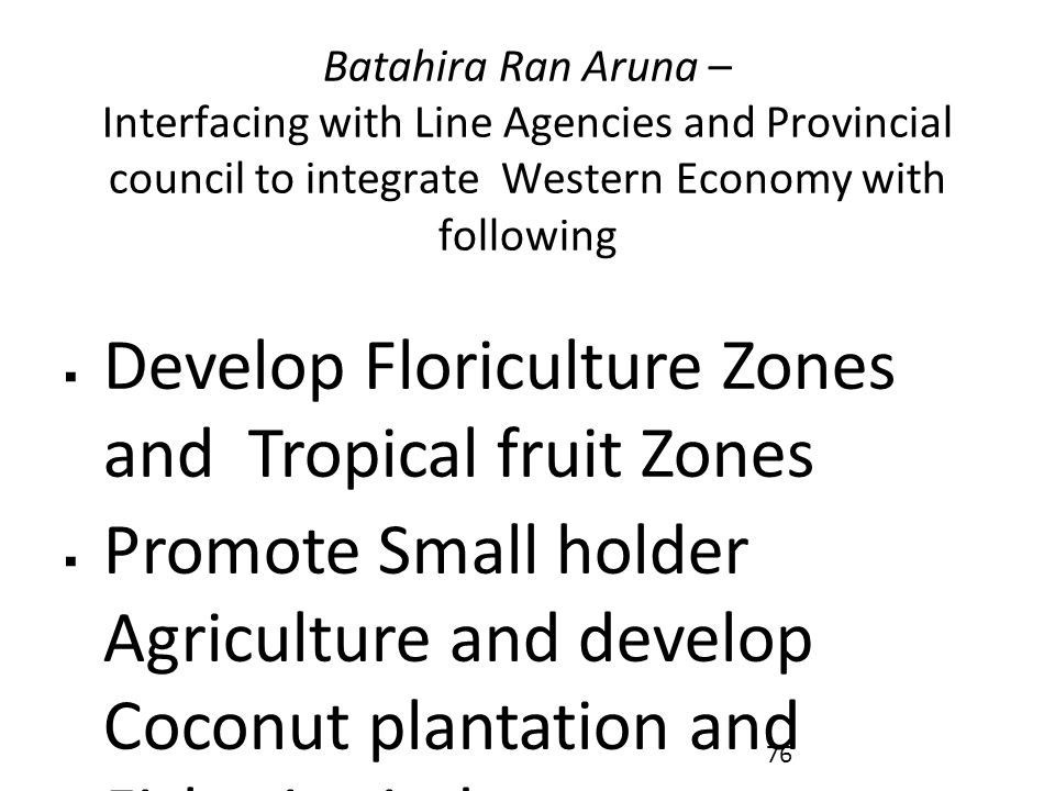 Batahira Ran Aruna – Interfacing with Line Agencies and Provincial council to integrate Western Economy with following  Develop Floriculture Zones and Tropical fruit Zones  Promote Small holder Agriculture and develop Coconut plantation and Fisheries industry  Introduce under-passes and by-passes to remove city congestion and facelift urban townships  Develop Dutch Canal and associated area as a Recreation and Tourism Belt 76