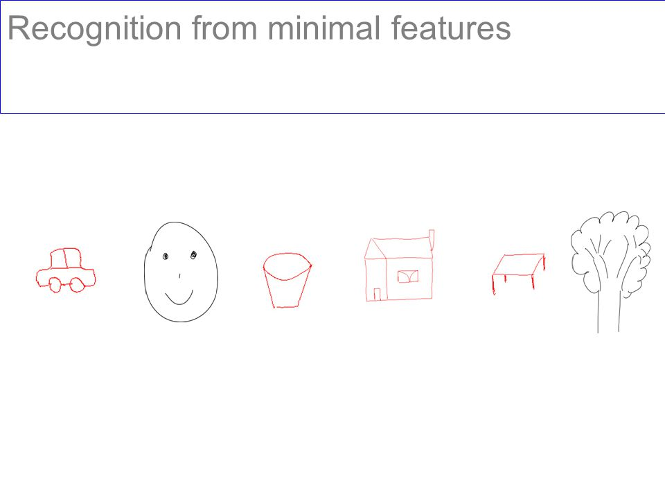 Recognition from minimal features
