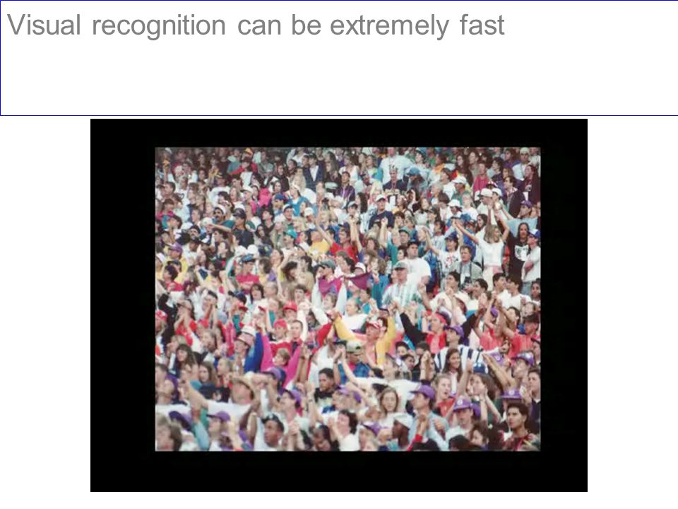 Visual recognition can be extremely fast