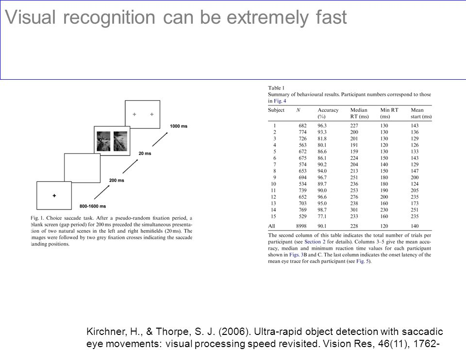 Visual recognition can be extremely fast Kirchner, H., & Thorpe, S. J. (2006). Ultra-rapid object detection with saccadic eye movements: visual proces