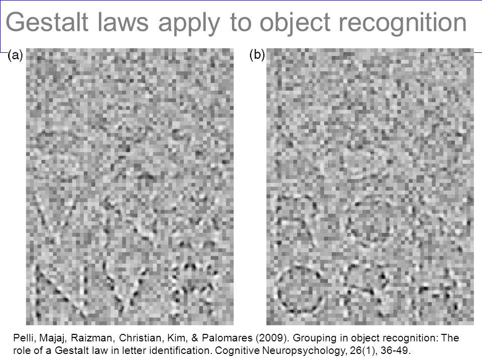 Gestalt laws apply to object recognition Pelli, Majaj, Raizman, Christian, Kim, & Palomares (2009). Grouping in object recognition: The role of a Gest