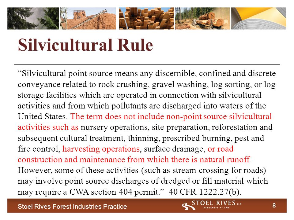 Stoel Rives Forest Industries Practice 9 Silvicultural Rule Defendants argue Silvicultural Rule clearly applies.