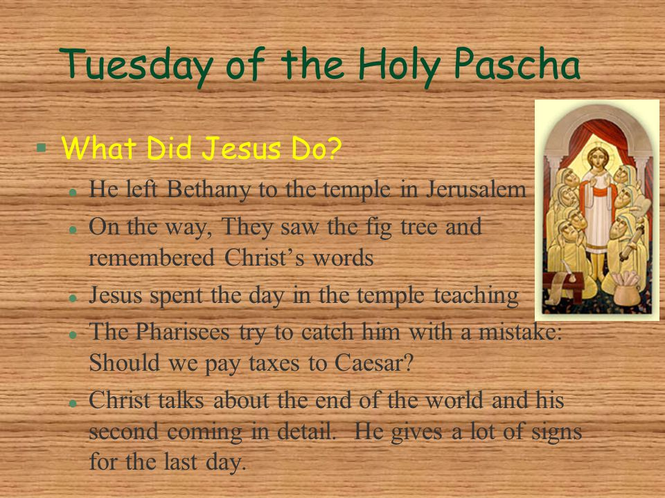 Tuesday of the Holy Pascha §What Did Jesus Do? l He left Bethany to the temple in Jerusalem l On the way, They saw the fig tree and remembered Christ'