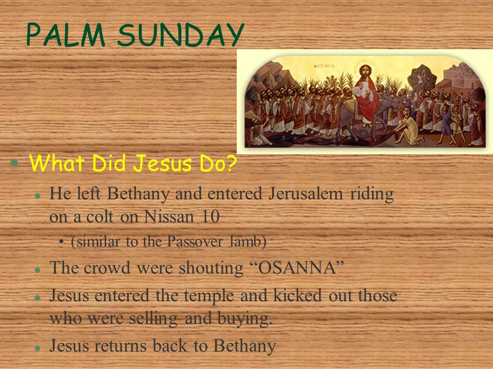 PALM SUNDAY §What Did Jesus Do? l He left Bethany and entered Jerusalem riding on a colt on Nissan 10 (similar to the Passover lamb) l The crowd were