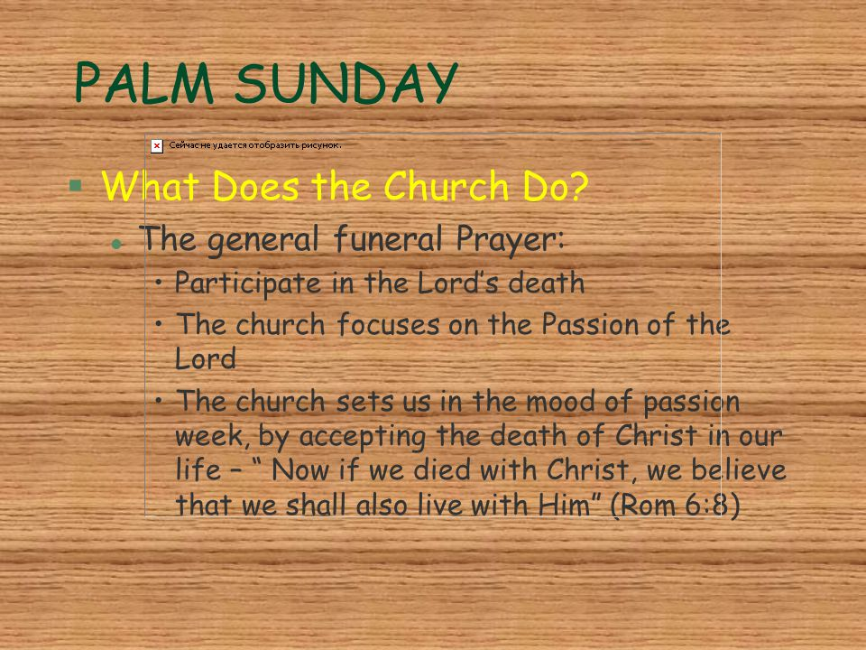 PALM SUNDAY §What Does the Church Do? l The general funeral Prayer: Participate in the Lord's death The church focuses on the Passion of the Lord The