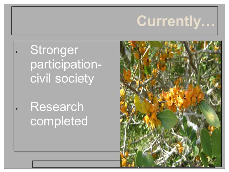 11/18/10 Currently… Stronger participation- civil society Research completed
