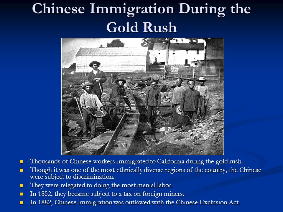Chinese Immigration During the Gold Rush Thousands of Chinese workers immigrated to California during the gold rush.
